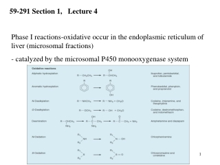 Phase I reactions-oxidative occur in the endoplasmic reticulum of  liver (microsomal fractions)