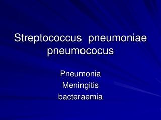 Streptococcus  pneumoniae pneumococus