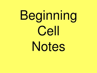 Beginning Cell  Notes
