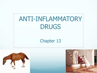 ANTI-INFLAMMATORY  DRUGS Chapter 13