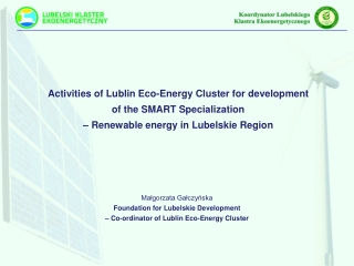 Activities of Lublin Eco-Energy Cluster for development  of the SMART Specialization