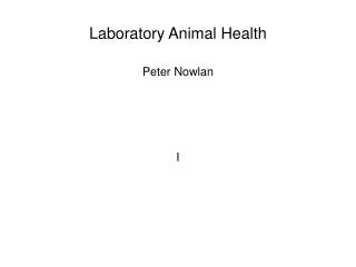 Laboratory Animal Health
