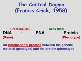 The Central Dogma (Francis Crick, 1958)