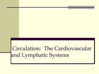 Circulation:  The Cardiovascular and Lymphatic Systems