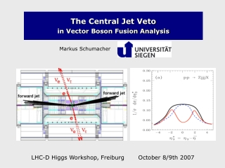The Central Jet Veto in Vector Boson Fusion Analysis
