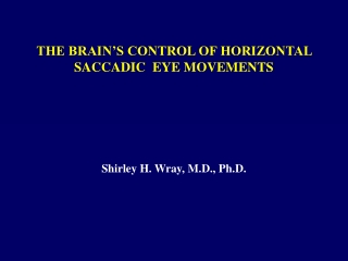 THE BRAIN'S CONTROL OF HORIZONTAL SACCADIC  EYE MOVEMENTS