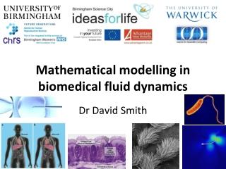 Mathematical modelling in biomedical fluid dynamics