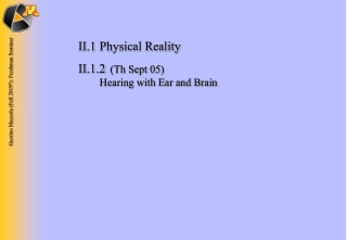 II.1	Physical Reality II.1.2 	 (Th Sept 05) 	 Hearing with Ear and Brain