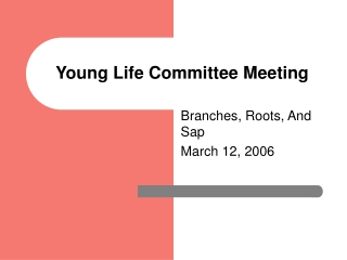 Young Life Committee Meeting