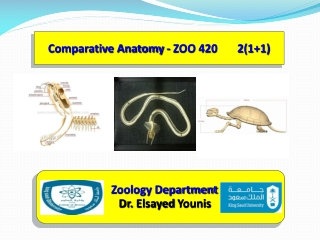 Comparative Anatomy - ZOO 420       2(1+1)