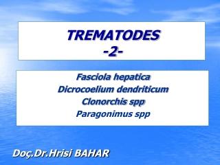 TREMATODES -2-
