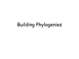 Building Phylogenies