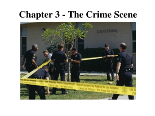 Chapter 3 - The Crime Scene