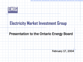 Electricity Market Investment Group