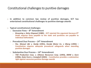 Constitutional challenges to punitive damages