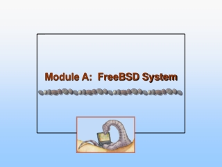 Module A:  FreeBSD System