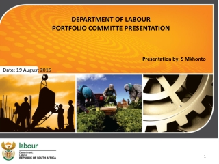 DEPARTMENT OF LABOUR  PORTFOLIO COMMITTE PRESENTATION Presentation by: S Mkhonto