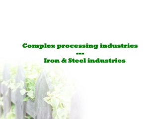Complex processing industries ---        Iron & Steel industries