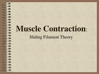 Muscle Contraction :