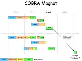 COBRA Magnet