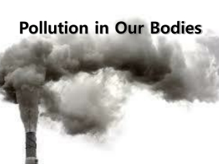 Pollution in Our Bodies