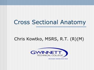 Cross Sectional Anatomy