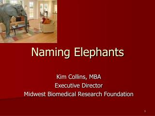 Naming Elephants