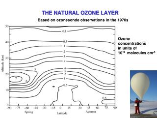 THE NATURAL OZONE LAYER