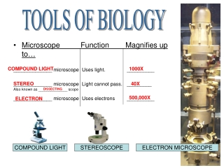 MicroscopeFunctionMagnifies up to… ______________ microscope Uses light.   __________