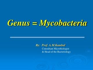 Genus = Mycobacteria
