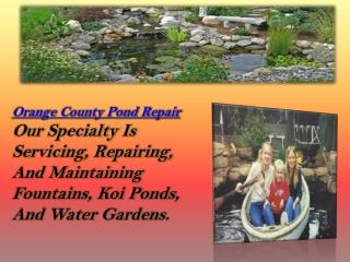 Orange County Pond Repair