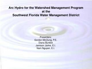 Arc Hydro for the Watershed Management Program at the Southwest Florida Water Management District