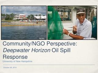 Community/NGO Perspective:  Deepwater Horizon  Oil Spill Response
