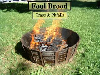 Foul Brood