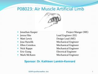 P08023: Air Muscle Artificial Limb