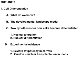 OUTLINE 2 II. Cell Differentiation A.  What do we know? B.  The developmental landscape model