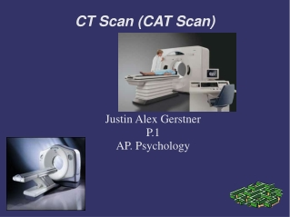 CT Scan (CAT Scan) 