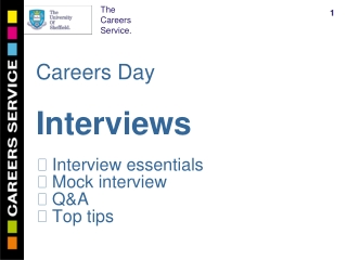 Careers Day Interviews