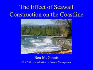 The Effect of Seawall Construction on the Coastline