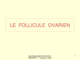 LE  FOLLICULE  OVARIEN