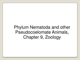 Phylum Nematoda and other Pseudocoelomate Animals, Chapter 9, Zoology