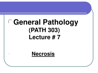 General Pathology            		 (PATH 303)                  		 Lecture # 7  Necrosis