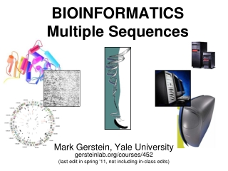 BIOINFORMATICS Multiple Sequences