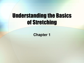 Understanding the Basics  of Stretching