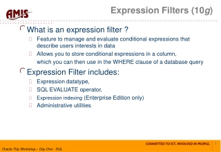 Expression Filters (10 g )