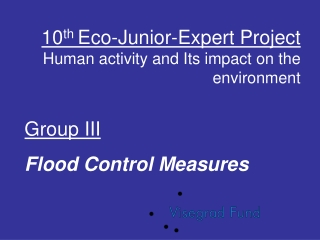 10 th  Eco-Junior-Expert Project Human activity and Its impact on the environment