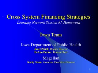 Cross System Financing Strategies Learning Network Session #1-Homework