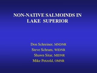 NON-NATIVE SALMOINDS IN  LAKE  SUPERIOR
