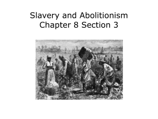 Slavery and Abolitionism Chapter 8 Section 3
