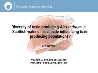 PSP toxins in Scottish waters decreasing